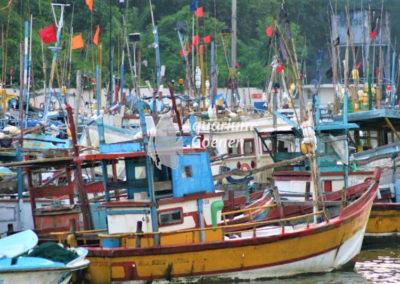 Aquarium-Coenen-Blog-Sri-Lanka-bootjes