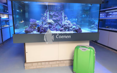 Aquarium tijdens vakantie