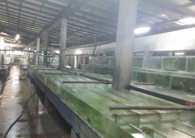 Aquariumblog Sri Lanka leveranciersbezoek