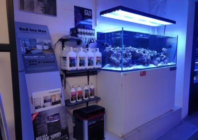 Aquarium Coenen Best Red Sea Reefer op eerste etage