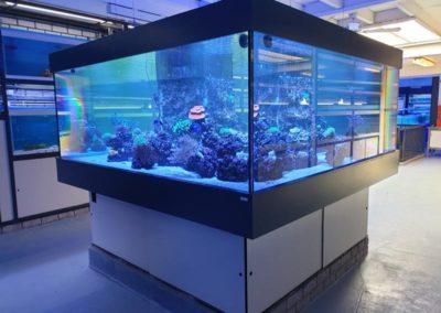 Showaquarium zeewater eerste etage, 4000 liter