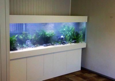 Aquarium Coenen Best maatwerkaquarium