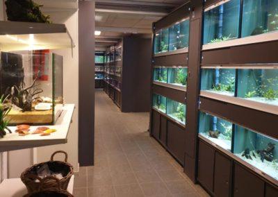 Aquarium Coenen Best zoetwaterafdeling